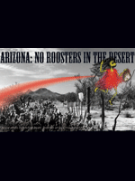 Arizona: No Roosters in the Desert